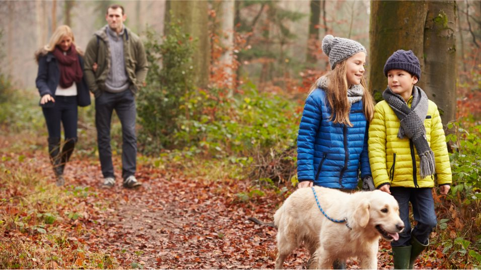 A family walking a dog