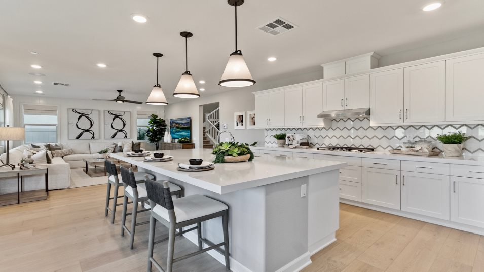 Sanctuary at Canopy Grove Residence 2 Kitchen