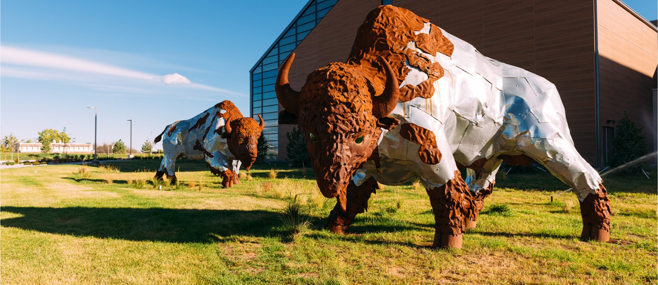 Bison sculpture located in Commerce City, CO