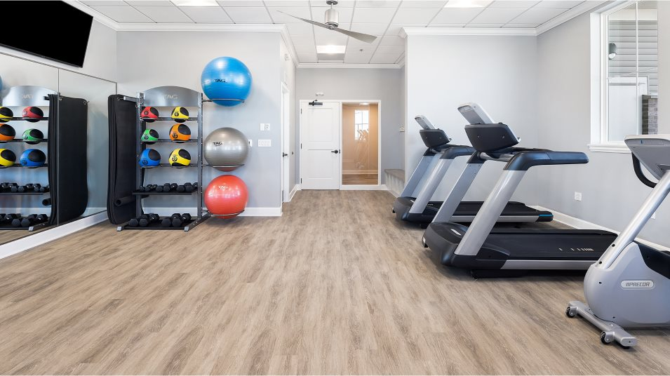 Gym with cardio and weightlifting equipment