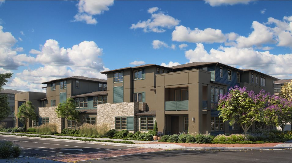 Boulevard Downing Residence 1 8-Plex Color 3